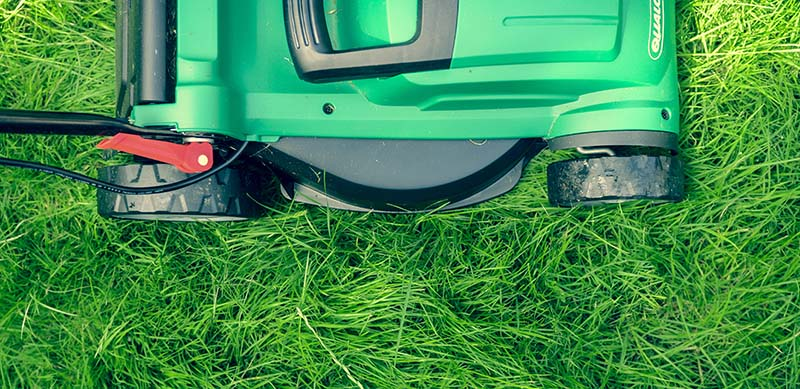 Tips for Keeping Lawn Properly Maintained